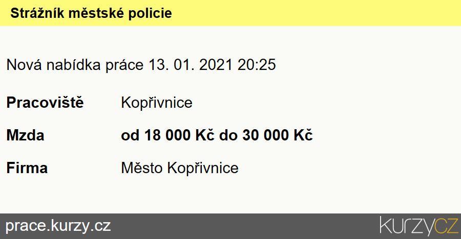 Strážník městské policie, Strážníci